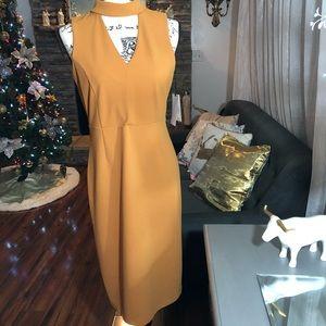 Ivanka Trump Dresses  Color: Orange
